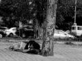 Nem lehet önhibájából hajléktalan, akiknek nem elegendő a fizetése