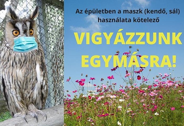 Falus Tamás programajánlója - Poroszló, Tisza-tavi Ökocentrum