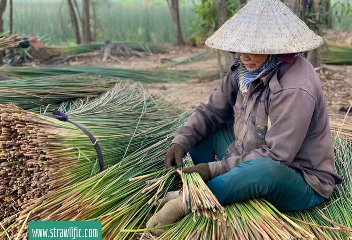 Szívószálgyártás Vietnámban