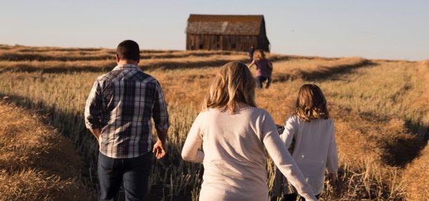 Kihirdették a családi gazdaságokról szóló törvényt