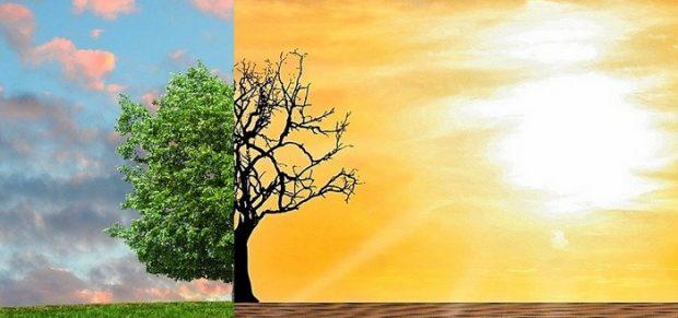 A kulcsszó: fenntarthatóság