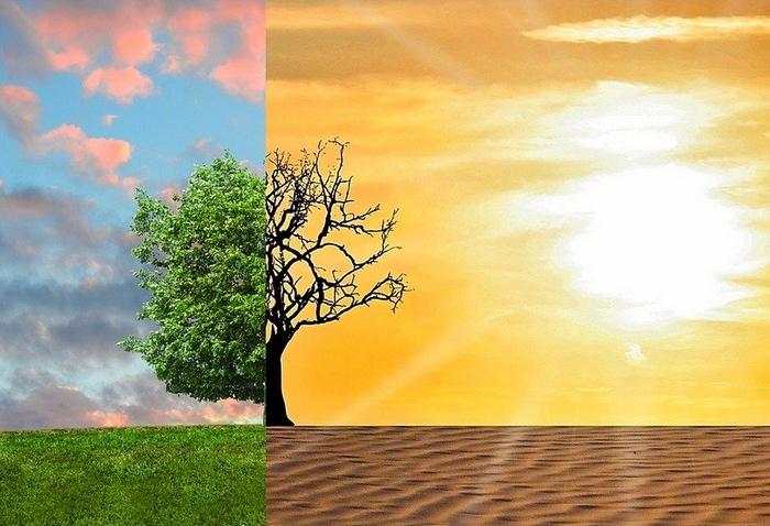 Felmelegedés, éghajlati vészhelyzet