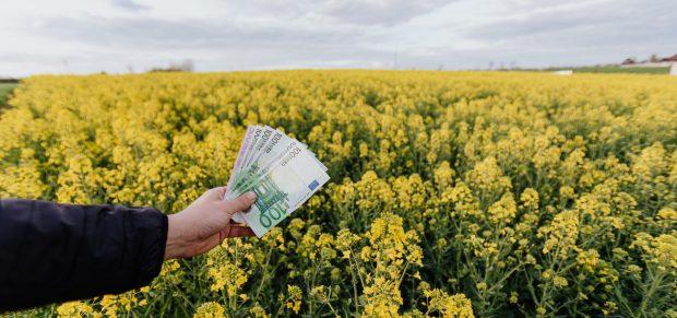Kártalanítást kaphatnak egyes földtulajdonosok