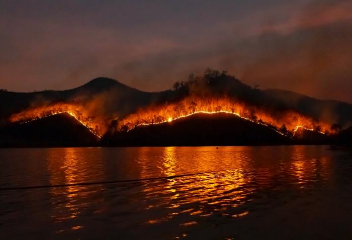 Klímaváltozás – erdőtüzek