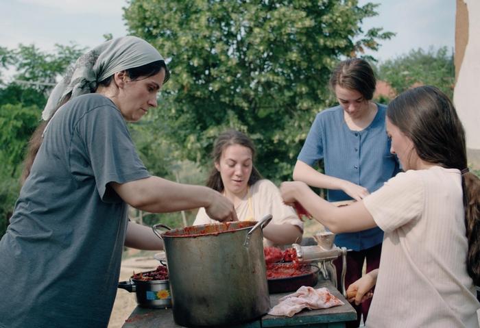 Mozi 2021 – Méhkas c. film – a Sundance Filmfesztivál csúcsprodukciója